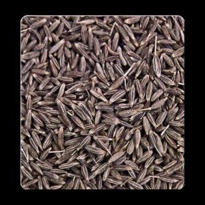 Top 10 Rare seeds
